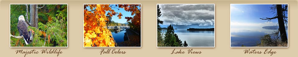 Sandpoint, Idaho has Majestic Wildlife, Fall Colors, Lake Views and beautiful Lake Pend Oreille Waters Edge